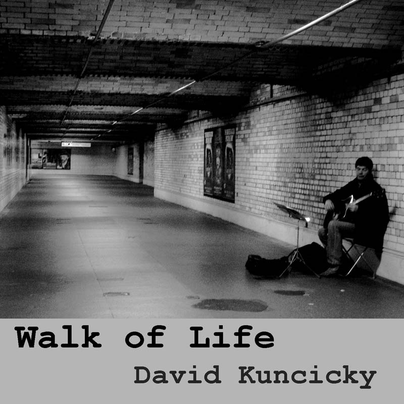 Bluegrass cover of Walk of Life
